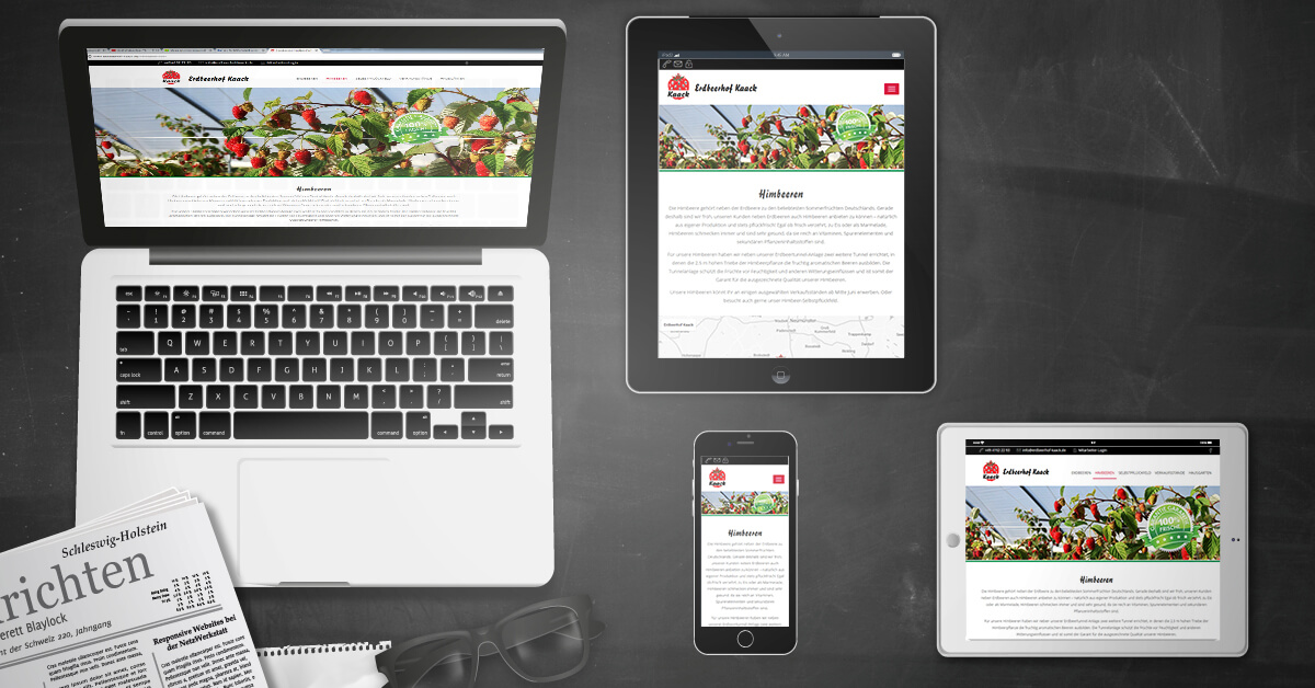Zur Erdbeersaison: TYPO3-Relaunch für den Erdbeerhof Kaack